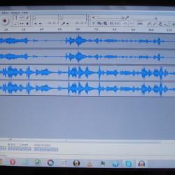 Voice Waveform Profile