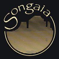 songaia-logo-brand-color-bg-lbl-sm